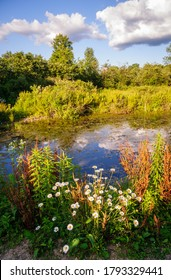 Jamestown Audubon Center and Sanctuary