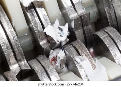 Jammed shredder scraps between paper shredder blades