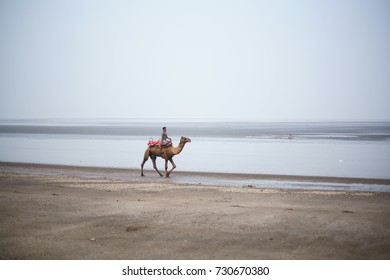 JAMPORE BEACH, DAMAN, INDIA - OCTOBER 9, 2017: A wide angle shot of man enjoying a camel ride, at the JAMPORE BEACH, DAMAN, INDIA.