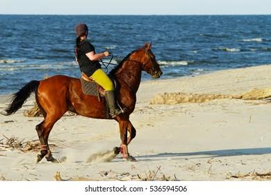 JANTAR, POLAND JUNE 27: Young woman riding chestnut Arabian horse from stud farm in Junoszyno on June 27, 2014 in Jantar, Pomerania, Poland. Beach horseback riding at Baltic sea shore.