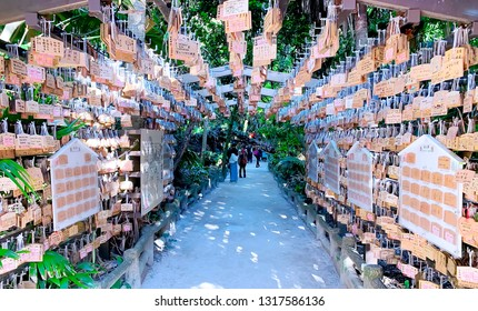 January 1, 2019 - Miyazaki, Japan :: Tunnel of pray in Aoshima Shrine, peoples make a pray by write on a mini wooden board and hang it on this pentagon tunnel