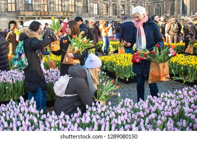 January 19, 2019. Amsterdam, North Holland, the Netherlands. National tulip day. This is the time for the tulips. An annual holiday on Dam Square.