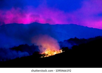 JANUARY 2018, VENTURA CALIFORNIA - Thomas Fire burns near Meiners Oaks in the Ojai Valley, Ventura County, the largest fire in California history