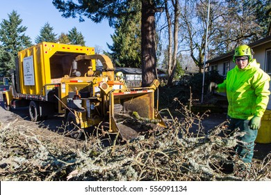 January 3, 2017. Eugene, Oregon, USA. Action shot of a tree service worker collecting fallen branches and debris from an ice and wind storm to feed into a wood chipper machine.