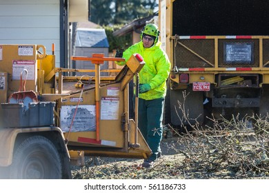 January 3, 2017. Eugene, Oregon, USA. A tree service worker cleans up debris left over from an ice storm