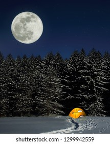 A January supermoon over snowy  spruce trees at Salt Fork State Park, Ohio.