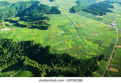 Japan aerial view
