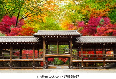 Japan autumn image. traditional architecture in the beautiful Japanese red leaves. Kyoto.