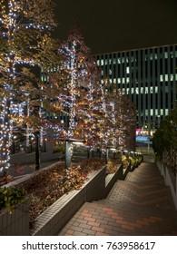 Japan Night view illumination
