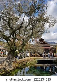 Japan, Oshino Hakkai - 28 October 2018 : Tourist go to Oshino Hakkai, a small village with 8 clear ponds  in Fuji Five Lake area, views of Mountain Fuji.