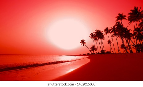 Japan palm island meets the dawn. Big red sun rises on the horizon. Beautiful waves on sand and palm trees adorn the background. Amazing natural dawn over sea on the isle beach. Dawn on Pacific ocean