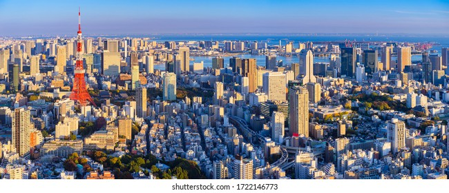 Japan. Panorama of Tokyo from afar. The streets of Tokyo bird's eye view. Japan on a summer day. Japan building. Japanese city view from a drone. Architecture. Tokyo urban
