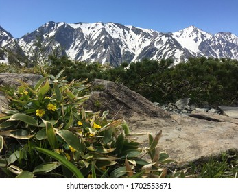 Japan, Shiroma-dake mountain with blue sky and snow mountain