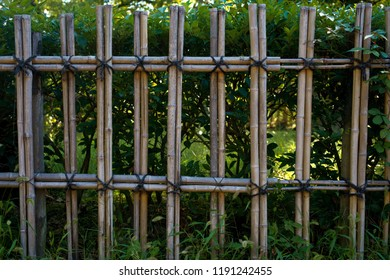 Japanese Bamboo Offence