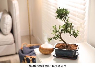 Japanese bonsai plant and oil diffuser on table in living room, space for text. Creating zen atmosphere at home