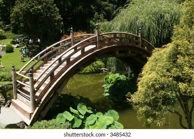 a Japanese bridge and garden