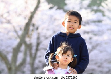 Japanese brother and sister with cherry blossoms (8 years old boy and 3 years old girl)