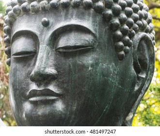 Japanese Buddha Statue : Meditation
