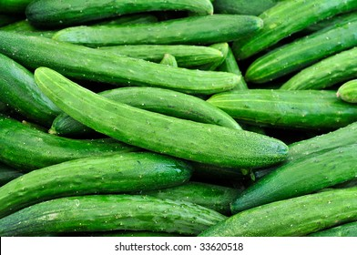 Japanese Burpless Cucumbers