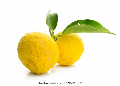 Japanese citron fruits isolated on white background