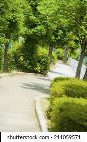 Japanese City Walks