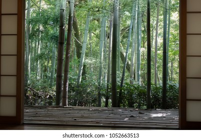 Japanese classic window and bamboo garden