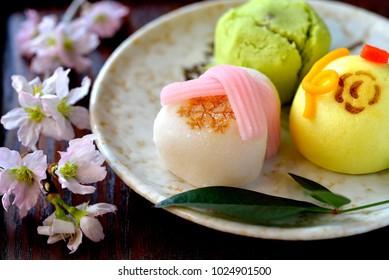 japanese confectionery WAGASHI