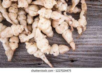 Japanese crosne Stachys affinis tubers rhizome root vegetable closeup
