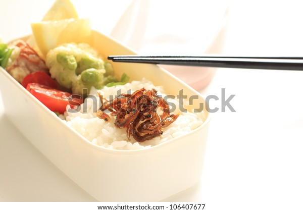 Japanese culture food, homemade packed lunch Obento
