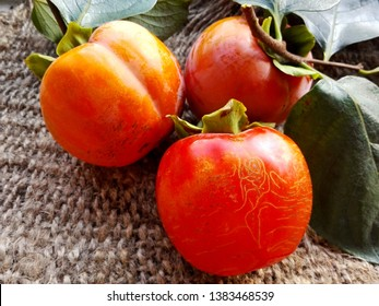Japanese delicious persimmon kaki fruits. Three tasty persimmon fruits or kaki on burlap background. Organic fresh persimmons from fuyu fruit farm orchard. Raw orange diospyros kaki on rustic table