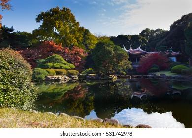 Japanese dojo in autumn