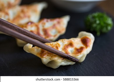 Japanese dumplings snack or side dish  called Gyoza or Jiaozi in China