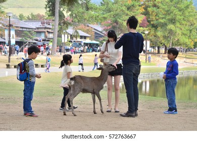 Japanese Family Playing with a Deer - October 2015 - Nara, Japan