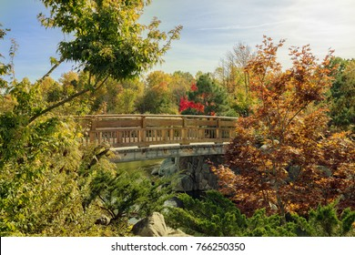 Japanese garden bridge in Grand Rapids, Michigan. Surrounded by beautiful fall foliage and a blue sky.