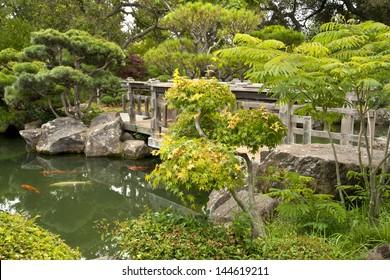Japanese Garden Bridge and Koi