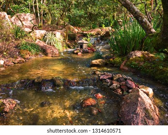 Japanese Garden Brook
