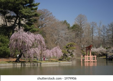 Japanese Garden at Brooklyn Botanic Garden