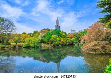The Japanese Garden with cherry blossom inside Shinjuku Gyoen in Shinjuku District, Tokyo town, Japan. Scenic landscape and Yoyogi skyscrapers on background reflecting around the pond.