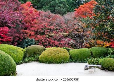 Japanese garden during Autumn season, Kyoto, Japan
