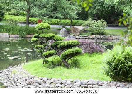 Japanese Garden Exotic Plants Bonsai Wroclaw Stock Photo (Edit Now ...