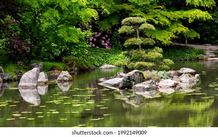 Japanese garden. Harmony in nature. Place of peace and quiet. Contemplation and meditation in a natural setting.