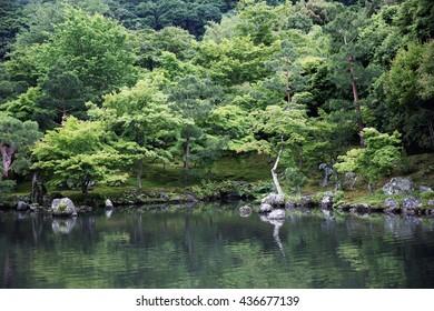 Japanese garden in kyoto japan