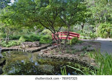 Japanese garden miiami