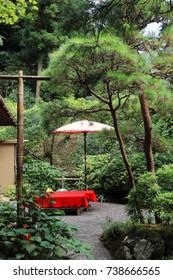 Japanese garden and outdoor tea ceremony umbrella