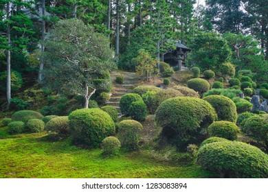 Japanese garden in Tofukuji temple (Tofuku-ji), Kyoto, Japan.