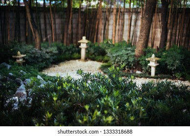 Japanese garden with white stone and green plant.
