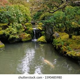 Japanese Gardens Pond Portland Oregon