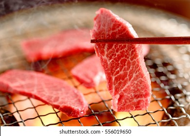 Japanese Grilled meat