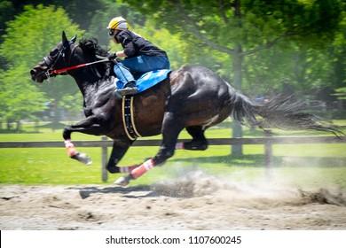 Japanese horseride, Mie, Japan