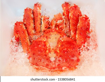 Japanese king crab  displayed in the ice bucket  for sale in Japan.